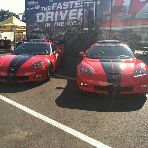 Mad Corvette Crew Bloods  Are  in