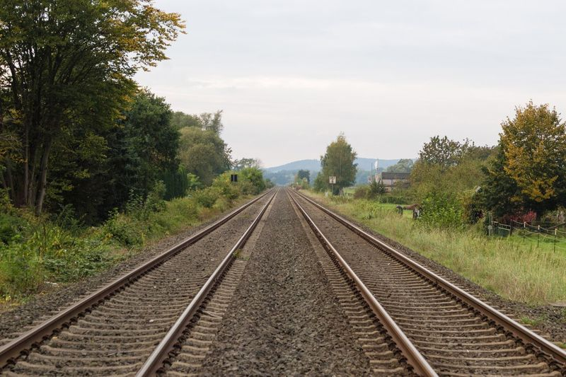 Railroad Track Rail Transportation Transportation The Way Forward Diminishing Perspective Tree No People Railroad Track Sky Day Landscape Outdoors Nature Growth