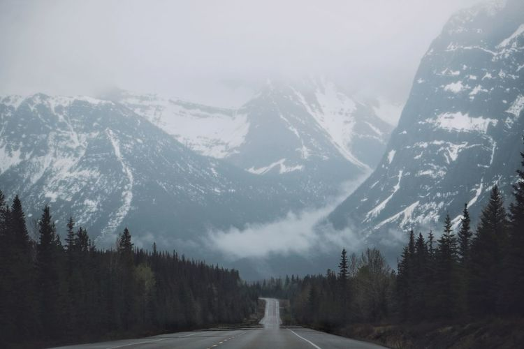 Road amidst trees against snowcapped mountains during winter