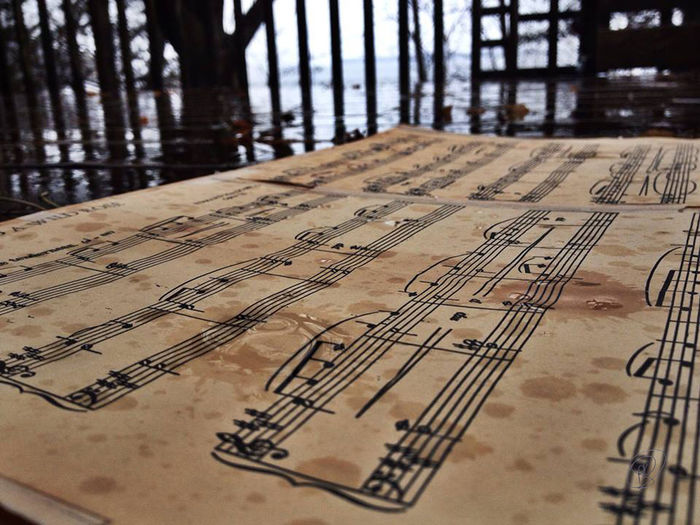 Paper No People Text Close-up Sheet Music Musical Note Indoors  Antique Sheet Music Communication Architecture Pattern Arts Culture And Entertainment Wood - Material Creativity Music Musical Notation Musical Afternoon