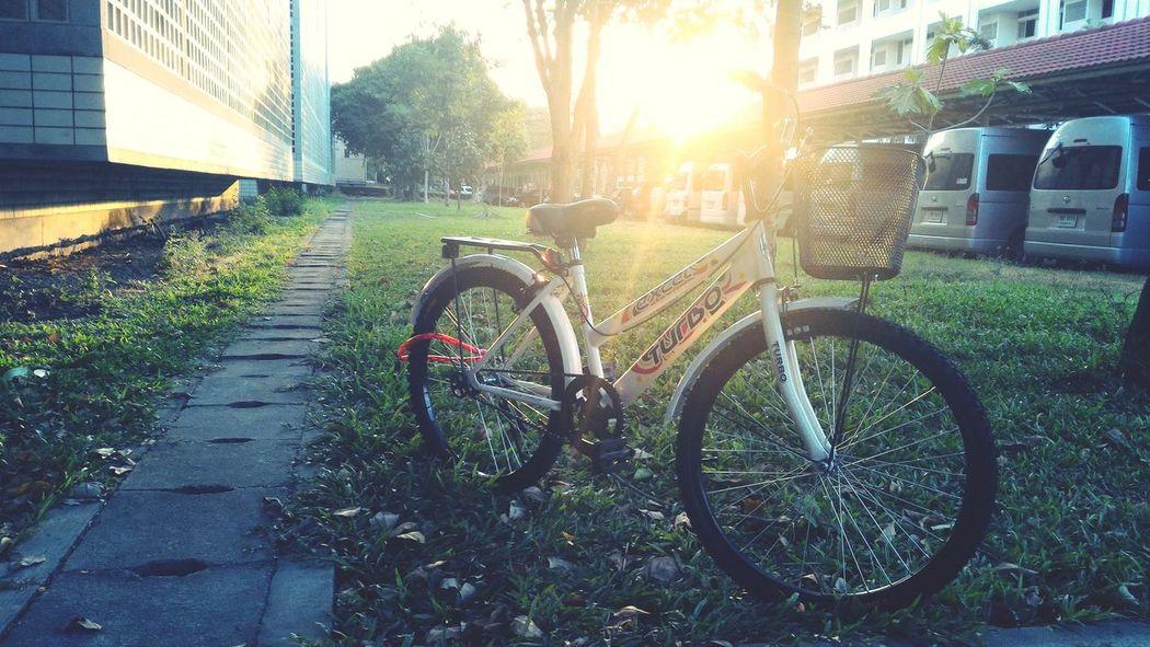 free voucher : ) Bicycle Bicycle Parking Bicycleride Bicyclelife Bicycle Work Bicycle Lane Bicycle Basket Vintage Bicycle Light Bicycle