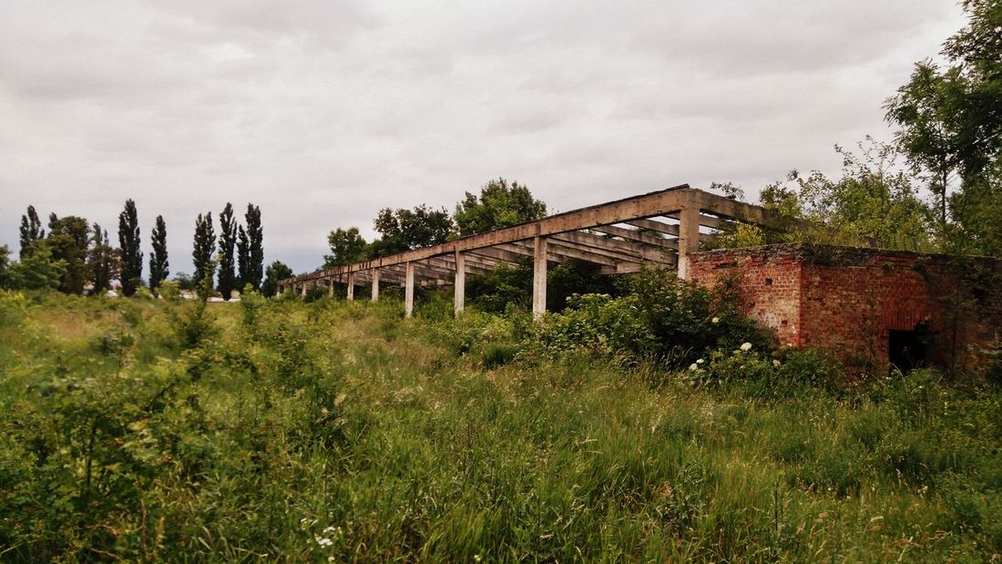 Made by Sony Xperia M4 Aqua Ancient Architecture Broken Glass Field Ghosts Graffiti Hussar Barracks Russian Military Abandoned Abandoned Buildings Bricks Broken Dust Empty Hussar Left Old Old Buildings Soviet Army Unused