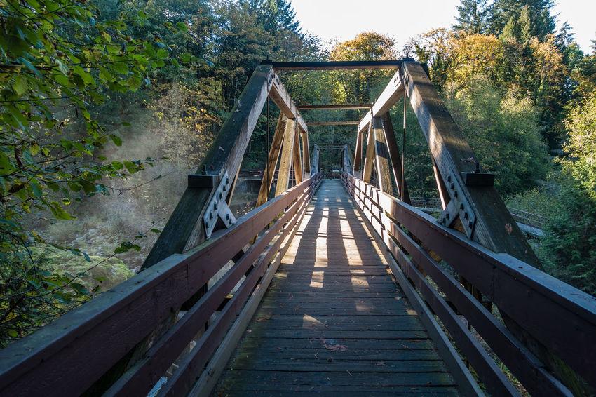 Walking bridge in Tumwater, Washington. Architecture Bridge Bridge - Man Made Structure Built Structure Day Footbridge Nature No People Outdoors The Way Forward Tree Tumwater Wood - Material