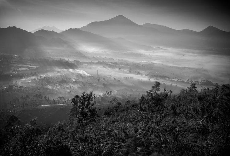 Hanging Out Hello World Taking Photos Landscape Photography Bnw Bw_indonesia #bw_awards #bw_mania #bw_divine #indonesianrepost #bw_mood #bwnesia