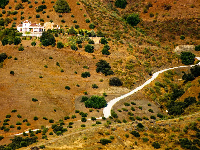 Andalucía Low Angle View Road Sunny Aerial View Beauty In Nature Brown Carpet, Flooring, Coverings, Patterns, Textures, Rugs, Ship, Backgrounds, Colorful, Day Dry End Of The World First Eyeem Photo House Land Landscape Nature No People Outdoors Road Sand Scenics - Nature Travel Travel Destinations Tree Yellow
