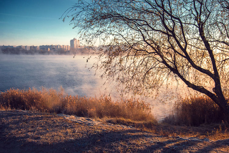Shadow Lake Sunrise Sunlight Morning Light Sunshine Sky Reflections Scenics Waves Fog City Nature Morning Sky Morning Foggy Morning Foggy Fog Belarus Tree Beauty In Nature Water Sunset City Morningcity Grass