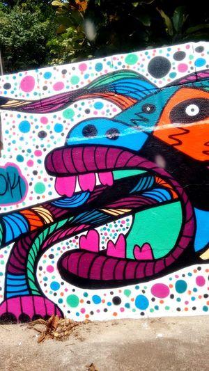Florianópolis Color Reflections Streetarts Street Brasil ♥ lagoa da conceiçao Paradise Beach