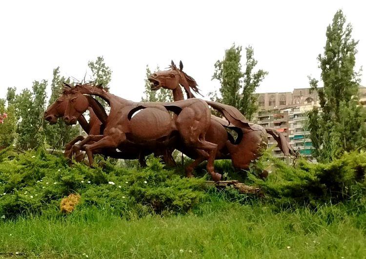 Figuras de Caballos en la Ciudad de Lerida. Horse Tree Animal Themes Grass Day No People Outdoors Mammal Nature Sky Horses Caballos Caballos 🐎🐎👢 EyeEm Gallery EyeEm EyeEmMarket. Eyeemmarket EyeEm Nature Lover