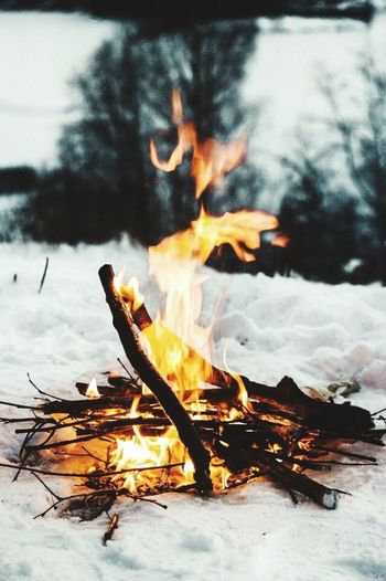 Fire Bonfire Winter Snow