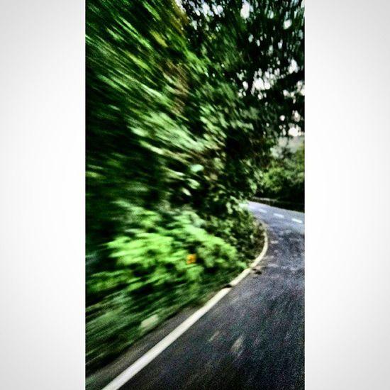 TP Bike Rideing Morning Lonavala Qtiyapa Trees Road Hill Tao_theartorgnisation Foto Motofoto ☺