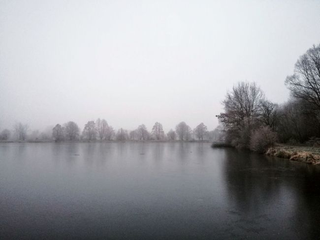 Tree Reflection Fog Nature Water Tranquility Lake Beauty In Nature No People Tranquil Scene Scenics Silhouette Outdoors Sky Day Fog Over Water Foggyweather Foggy Forest Fog In The Trees Fog_collection Foggy Landscape Foggy Day Foggy Foggy Weather Cold Temperature
