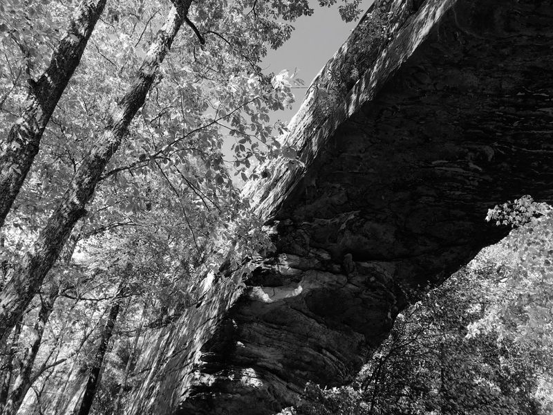 Monochrome Photography Natural Bridge  Nature Huge Scenics Low Angle View