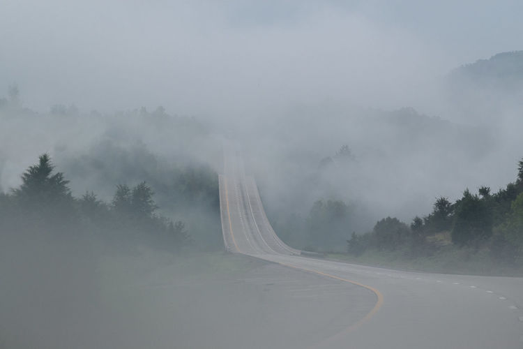 Road by trees against sky during foggy weather