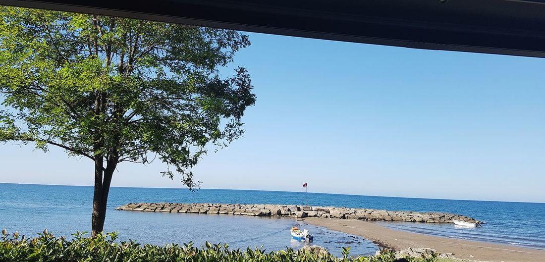 🇹🇷 Sea Beach Water Horizon Over Water Tree Tranquility Nature Beauty In Nature Tranquil Scene Scenics Sky Blue Day Clear Sky Outdoors Sand Vacations No People Deniz Mavi Gökyüzümavi Kumsal