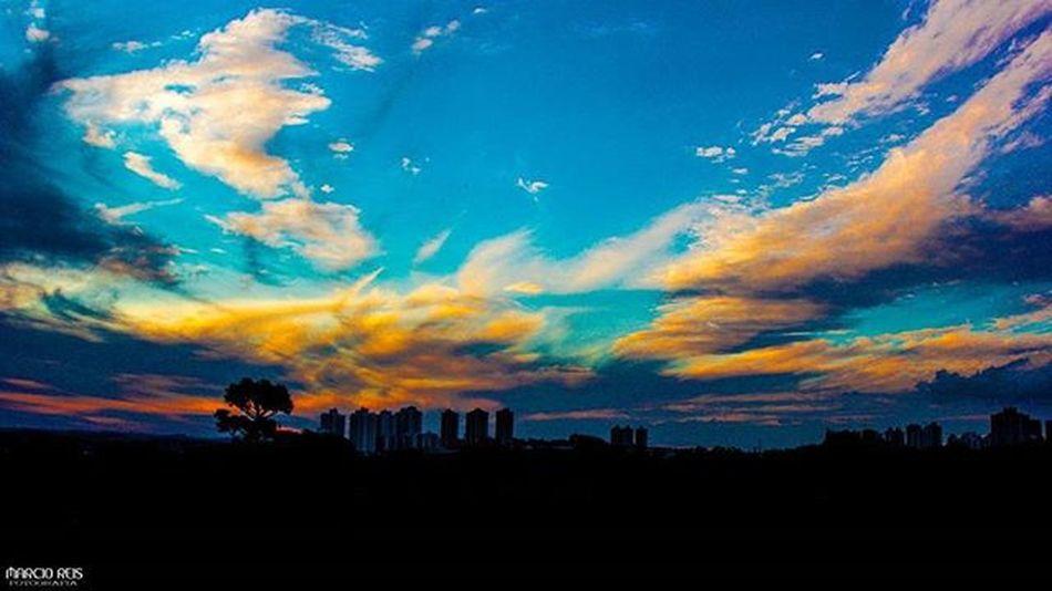 ( Londrina) - Vista do jardim Botânico Londrina Londrinaofficial Gazetadopovo Jornaldelondrina Londrinero Canon Nikon Fotografia Azul Londrinense City Bonde Storn