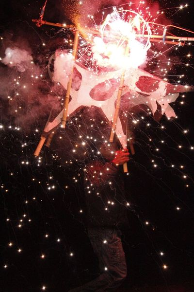 Fireworks Traditional Culture Dance Oaxaca Traditional Costume Fireworksphotography I Love It ❤ My City Torito Mexico