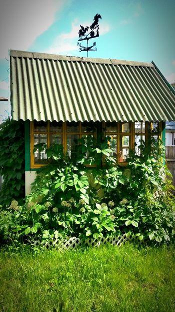 Relaxing уют домиквдеревне уютноеместечко Домик❤️ домик в саду