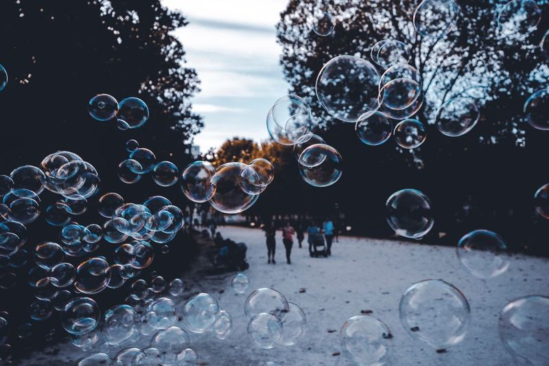 Parco Sempione Milan Milano Bubble Fragility Vulnerability  Nature Bubble Wand Transparent Sphere No People Tree Water Plant Design Lightweight Shape Motion Outdoors Mid-air Soap Sud Day Sky