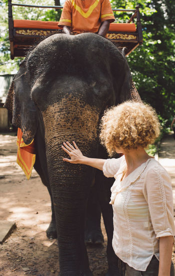 Siem Reap Cambodia Angkor Curly Hair Girl Elephant Mammal Vertebrate Animal Wildlife Rear View Real People One Animal Focus On Foreground Day Domestic Animals People Domestic Pets Lifestyles Standing Livestock Women Outdoors Animal Trunk Herbivorous