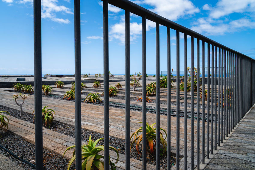 Railing Sky Nature Architecture Metal Built Structure No People Day Plant Cloud - Sky Security Barrier Fence Boundary Safety Protection Outdoors Beauty In Nature Growth Sunlight