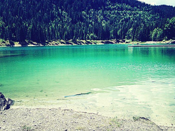 Enjoying The Sun Beautiful Day Lake Nature