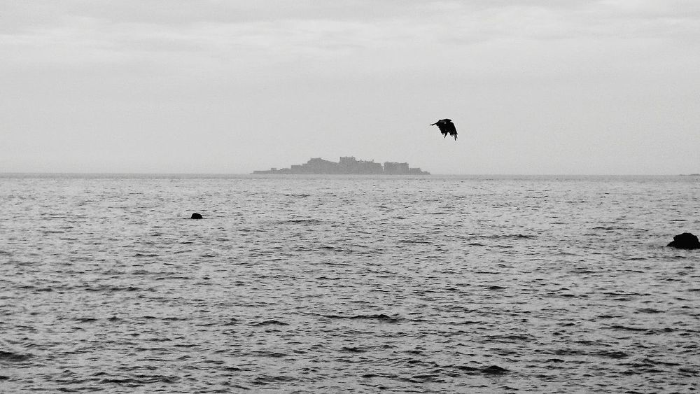 夏休み帰省 散歩 軍艦島と鳶 Nagasaki Walk My Hometown 世界文化遺産 World Heritage 軍艦島(gunkan-jima) 端島 Black Kite Black And White