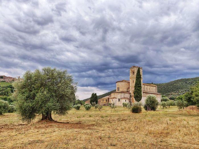 Sant'Antimo Sant'antimo Montalcino Italy Tuscany Tuscany Countryside Toscana Tree Architecture Sky Cloud - Sky Building Exterior