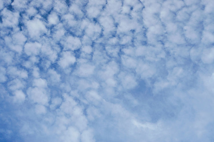 cloud Backgrounds Blue Sky Only Textured  Abstract Pattern Cloudscape Full Frame Sky Close-up Abstract Backgrounds Meteorology Marbled Effect Cumulonimbus Cyclone Color Gradient Hurricane - Storm Cumulus Cloud Stratosphere Heaven Thunderstorm Granite Fluffy Cirrus