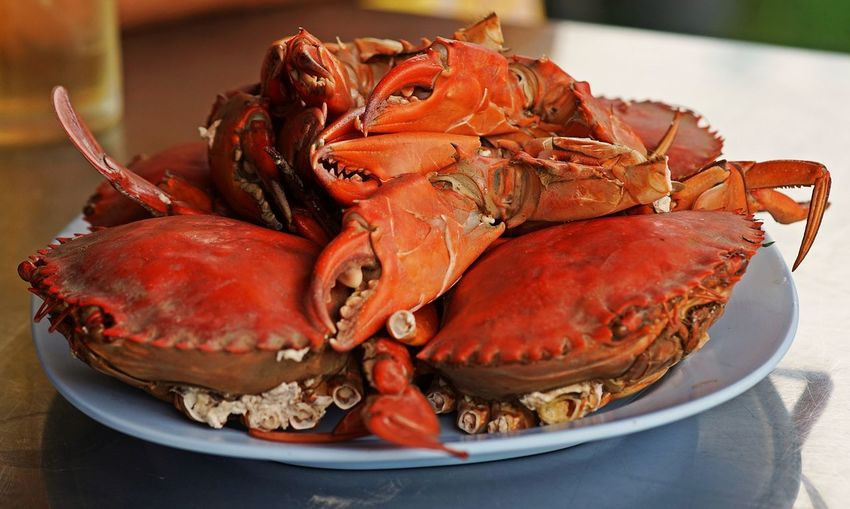 Stream sea crab, fresh and delicious seafood, Thailand Stream Crab Thailand Close-up Crab Crustacean Dinner Food Food And Drink Freshness Healthy Eating Orange Color Plate Ready-to-eat Seafood Serving Size Still Life Wellbeing
