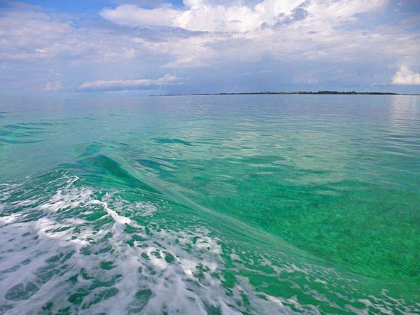 Sea Water Nature Horizon Over Water Bahamas Carribean Clear Water Island Sailboat Sailing Deep Blue Cruise Ship Fishing Dolphins Wave Waves, Ocean, Nature Travel Photography Photo Summer Sunny