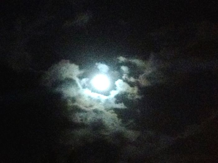Sky Cloud - Sky Low Angle View Night Moon Beauty In Nature Nature Astronomy Full Moon Space Moonlight
