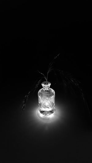 Plants Grass Bottle Bottles Collection Transparent Light Light And Shadow Darkness And Light Blackandwhite Blackandwhite Photography Black And White Collection  Black Background Shining Light Silhouette