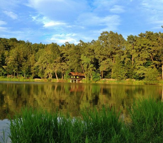 Hello World EyeEm Best Shots - Landscape EyeEm Nature Lover Nature_collection