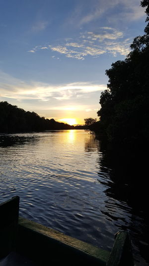 Trinidad And Tobago Caroni Swamp Sunset Water Nature Beauty In Nature