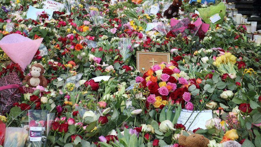 Stockholm City Flowers Sweden Today In Stockholm Terrorism Terrorist Attack Flower Fragility Flower Head