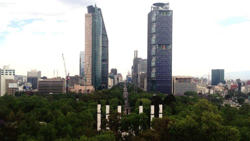 Desde el Castillo. Mexico City Chapultepec Reforma