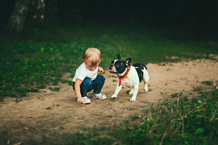 Friendship Pets Child Bonding Togetherness Childhood Boys Dog Males  Full Length Pet Leash Pet Owner French Bulldog Puppy Canine Bulldog