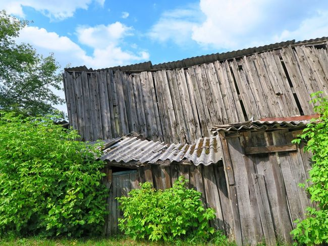 Barn Shed Roof Wood - Material Building Exterior Built Structure Old Architecture Damaged Outdoors No People Abandoned Lithuania Vilnius, Lithuania Vilnius City Capital City Vilnius City Buildings