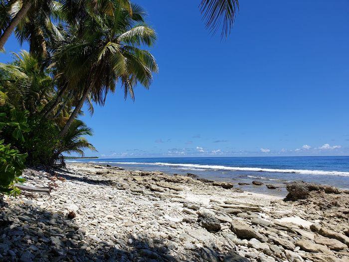rocky Sea View