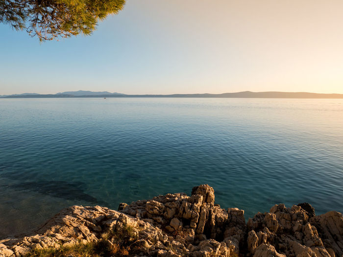 Rocky coastline and clear sea at sunset Adriatic Beauty In Nature Calm Clear Sky Coast Coastline Croatia Day Horizon Over Water Island Landscape Mediterranean  Nature No People Nobody Outdoors Pine Tree Relax Scenics Shore Sunset Tranquility Travel Vacation Water