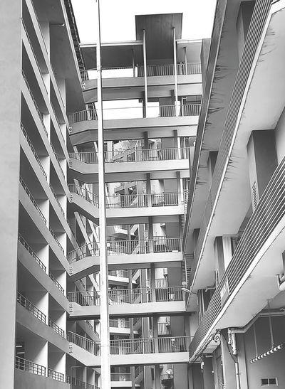 Architecture Modern The Week On EyeEm Black&white Black & White No People Building Stairs Staircase Buildings Architecture Humanmade Zigzag Eyeemarchitecture Kuching, Sarawak Icomsquarekuching Shelf Library Indoors  Bookshelf Day