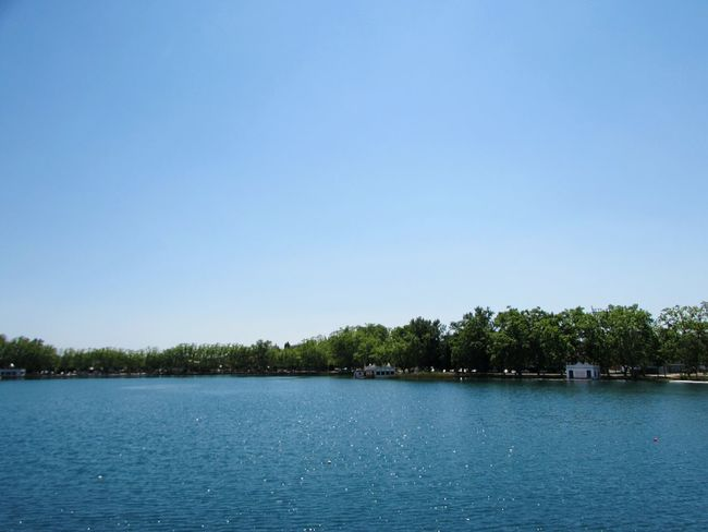 L'Estany #milcentdeuphotografy Tree Water Clear Sky Lake Blue Nautical Vessel Sky Landscape Lush - Description Calm Archipelago Waterfront Ocean Standing Water Sandy Beach Pier Woods Lakeside Mid Distance Volcanic Rock Lush Foliage Horizon Over Water Stilt Fishing Pole Forest Headland Boat Rippled Underneath Countryside