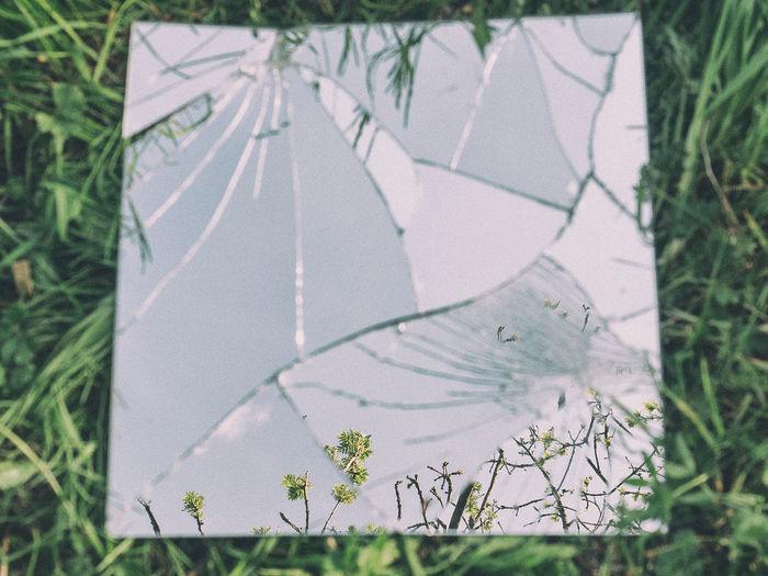 Close-up of broken mirror