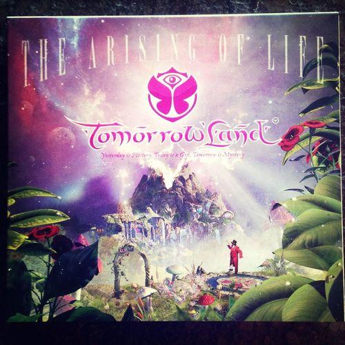 Tomorrowland 2013  Freude Musik Leben