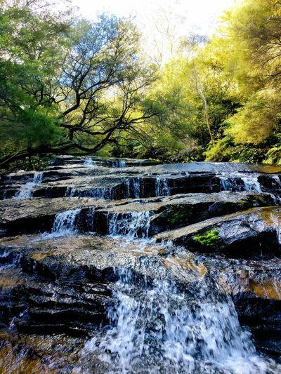 Waterfall Waterfall Sydney Waterfall Australia Waterfall Blue Mountains Waterfall Stuck In Middle Of Waterfall