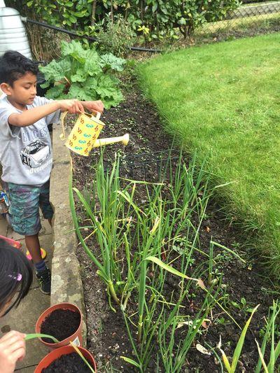 Adam & Amelia's Garden Spring Gardening With Kids