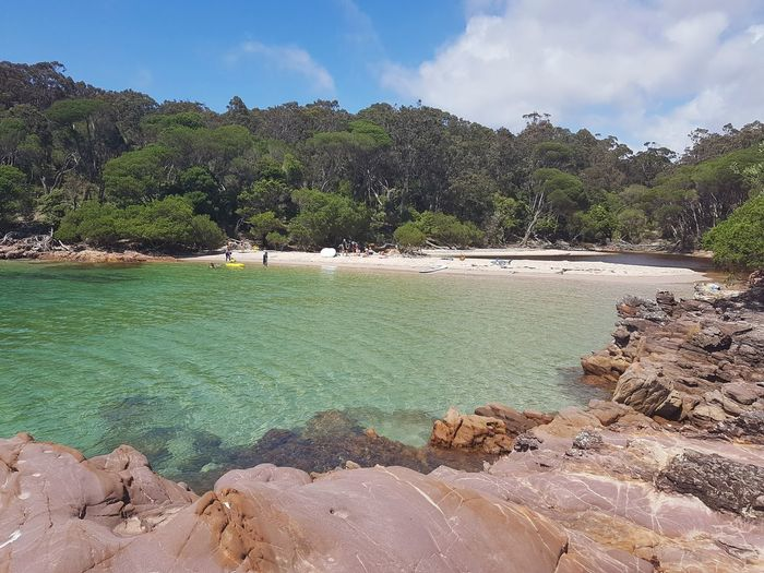 The secluded Bittangabee Bay in Ben Boyd National Park, far South Coast NSW Australia Secluded Beach Secluded Bay Bay Australian Beach NSW Australia Nsw Landscape Australia Coast Beach Ben Boyd National Park Water Outdoors Sea Cloud - Sky Tranquil Scene Nature Tree Rock - Object