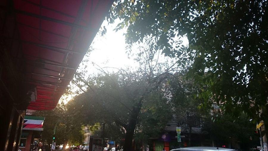 Mexico City Mexico, D.F. Col. Roma Evening Sky