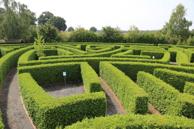 Scenic view of garden in park
