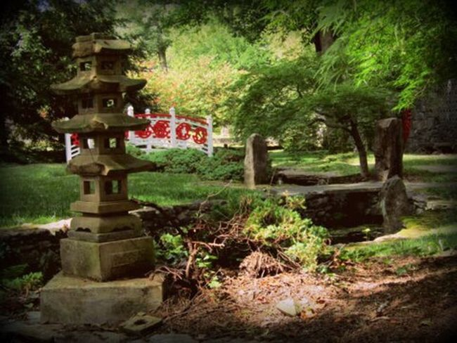 Asiangarden Nature
